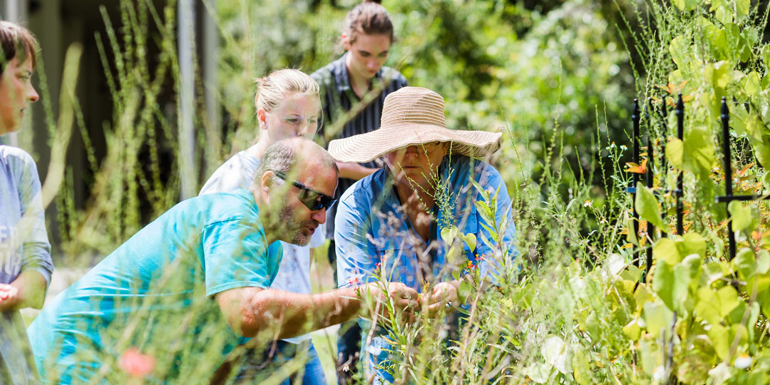 Horticulture_Environmental(1).jpg